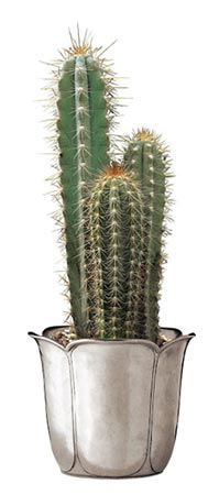 Cache pot cm h 12,5 (Pewter) - collection: Tulipano. Cosi Tabellini.